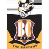 AFC Bradford