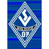 Waldhof Mannheim News